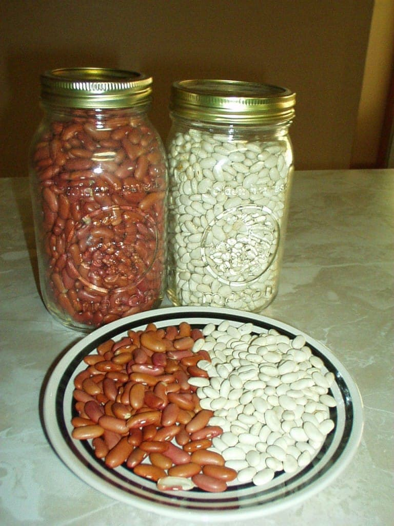 Beans, Full of Healthy Fiber or FODMAPS?