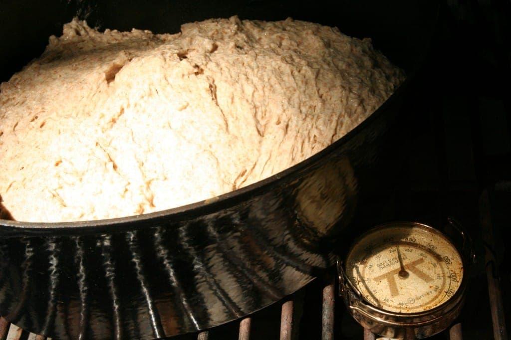 Raw No-Knead Dough Hits the Pan