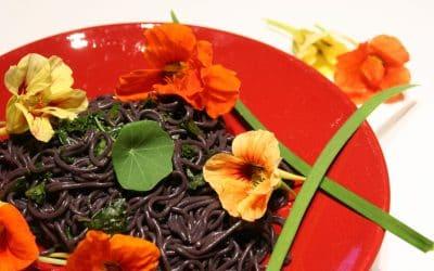 Nasturtiums, Beautiful, Edible, and Easy to Grow