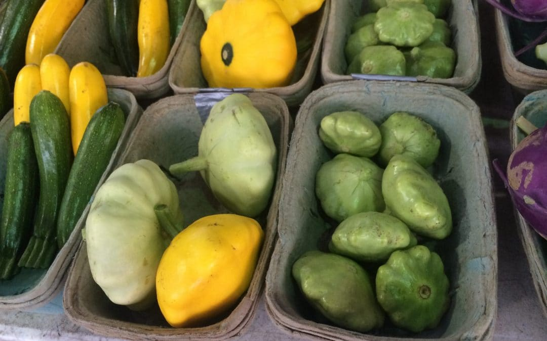 Smitten With Squash! Enter To Win a Copy