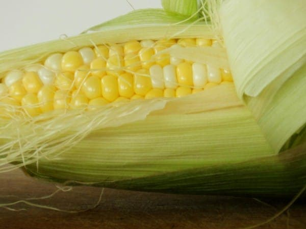 Lovely Bicolor Corn