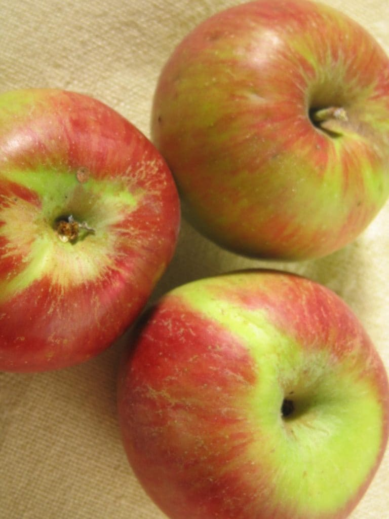 Fall is a Great Time to Apple Up Your Smoothie!