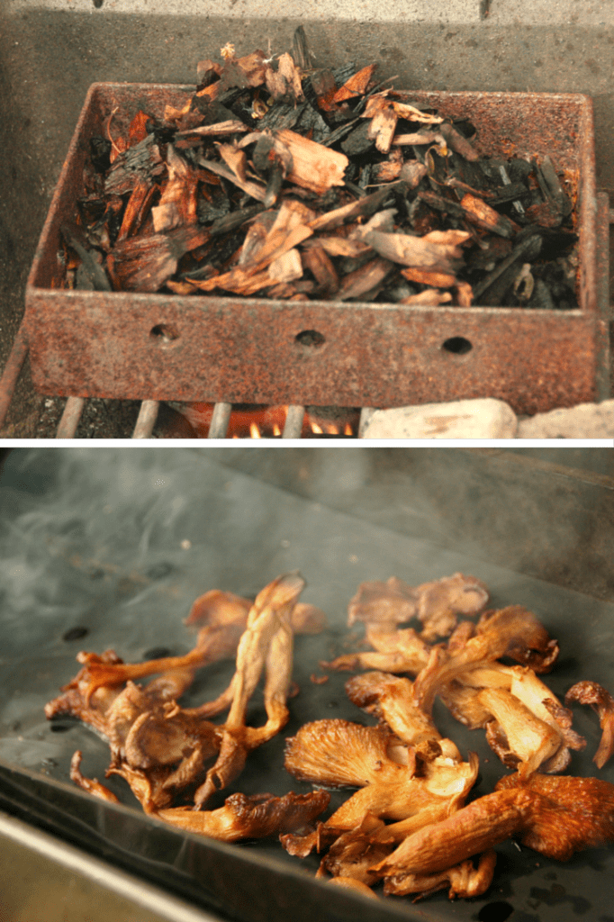 Hickory Chips and Smoky Mushrooms