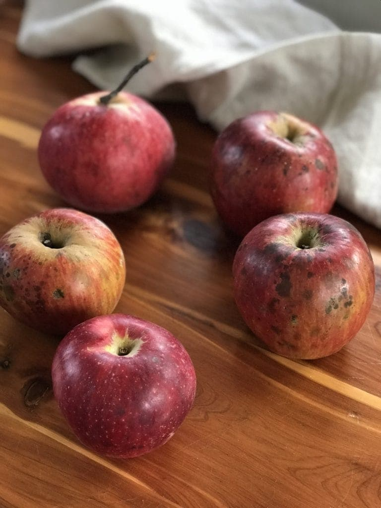 Heirloom apples for holiday tarts