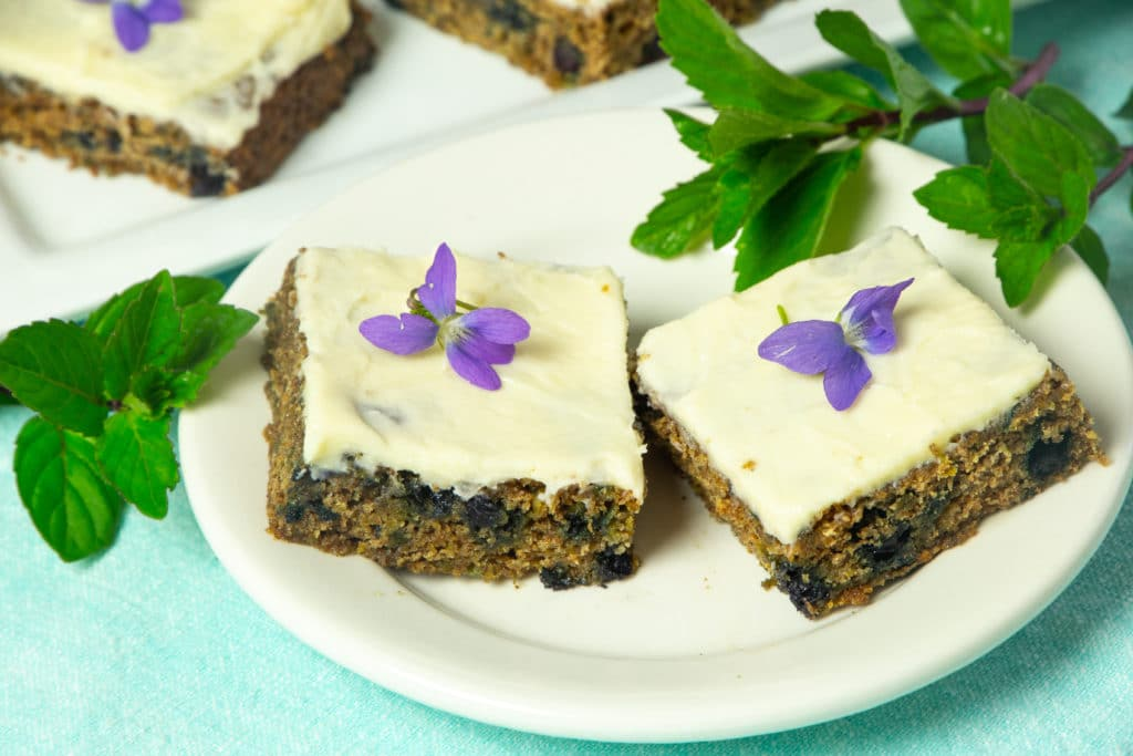 Purple Carrot Bars with Blueberries