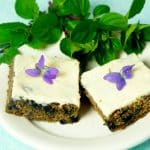 Plant Based Purple Carrot and Blueberry Bars