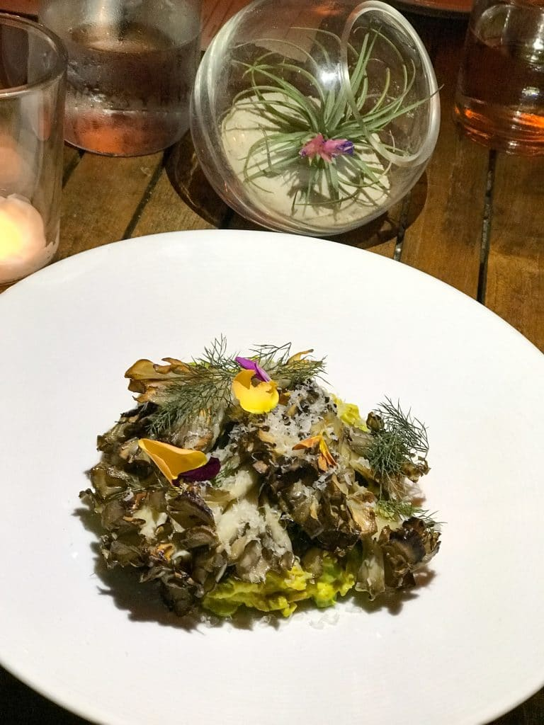 Plant Sunflower Risotto