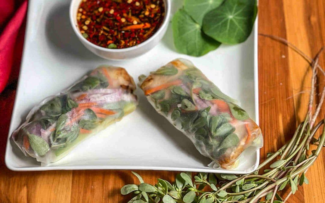 Purslane and Glazed Tofu Summer Rolls, Eat Your Weeds