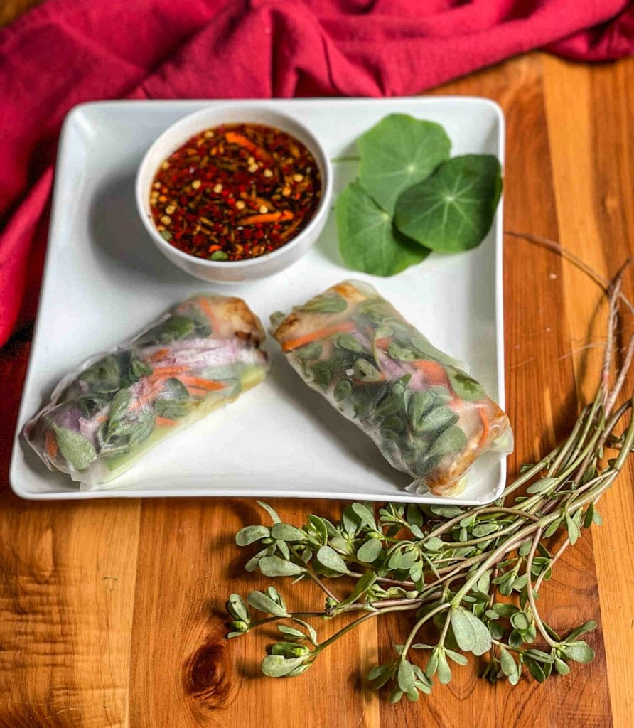 Purslane and Glazed Tofu Summer Rolls